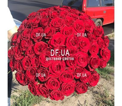 """Bouquet of 65 red roses - view 1"" in the online flower shop df.ua"