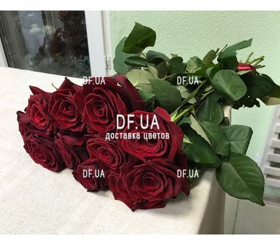 """Bouquet of 11 roses - view 2"" in the online flower shop df.ua"