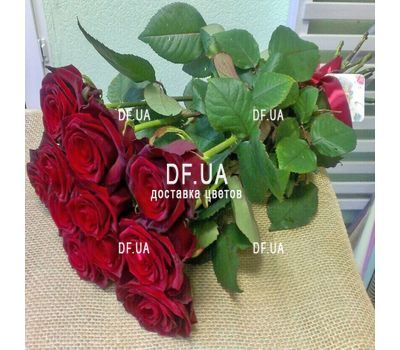 """Bouquet of 11 roses - view 4"" in the online flower shop df.ua"