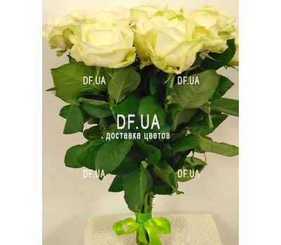 """""""Bouquet of 15 white roses - view 3"""" in the online flower shop df.ua"""