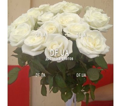 """Bouquet of 17 roses - view 1"" in the online flower shop df.ua"