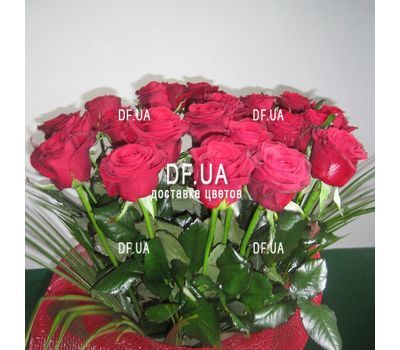 """Bouquet of 19 red roses - view 2"" in the online flower shop df.ua"