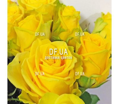 """Bouquet of 19 yellow roses - view 1"" in the online flower shop df.ua"