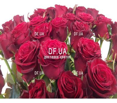 """Bouquet of 27 red roses - wiev 5"" in the online flower shop df.ua"
