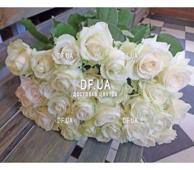 """""""Букет из 31 белых роз - вид 1"""" в интернет-магазине цветов df.ua"""