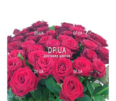 """Bouquet of 45 red roses - view 3"" in the online flower shop df.ua"