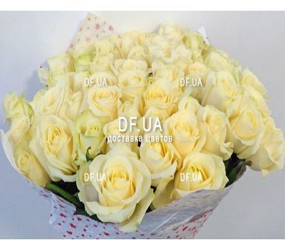 """A bouquet of 51 white roses - view 4"" in the online flower shop df.ua"