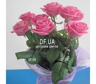 """Букет из 7 роз вид 4"" in the online flower shop df.ua"