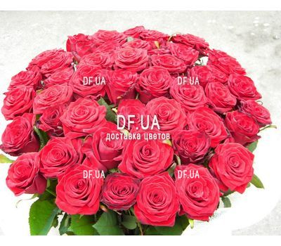 """Bouquet of chic roses - view 3"" in the online flower shop df.ua"