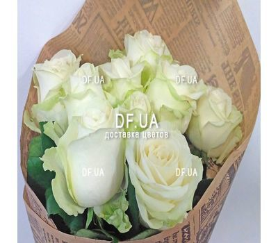"""Nine white roses - view 3"" in the online flower shop df.ua"