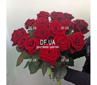 """Popular bouquet of roses - view 5"" in the online flower shop df.ua"