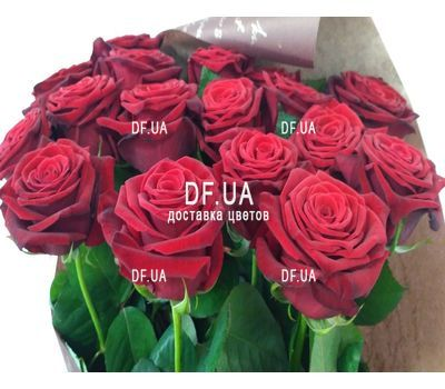 """Simple bouquet of roses - view 4"" in the online flower shop df.ua"