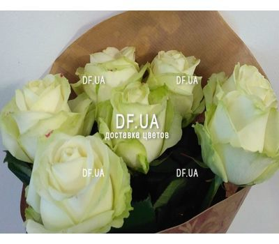 """Seven white roses - view 1"" in the online flower shop df.ua"