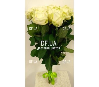 """11 white roses - view 2"" in the online flower shop df.ua"