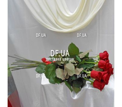"""15 roses 1 meter - view 2"" in the online flower shop df.ua"