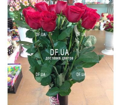 """15 roses 1 meter - view 3"" in the online flower shop df.ua"