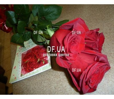 """""""3 imported red roses - view 2"""" in the online flower shop df.ua"""