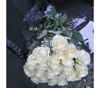"""""""White roses import - view 1"""" in the online flower shop df.ua"""
