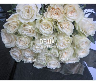 """""""White roses import - view 2"""" in the online flower shop df.ua"""