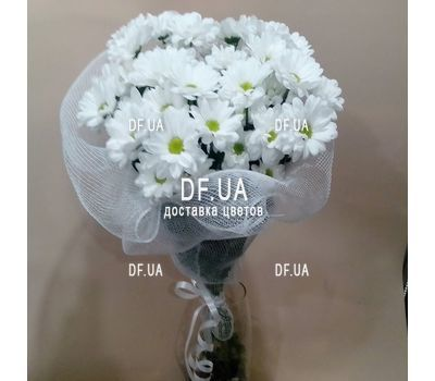 """""""Bouquet of white camomiles - view 2"""" in the online flower shop df.ua"""