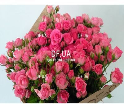 """Bouquet of small pink shrub roses - view 1"" in the online flower shop df.ua"