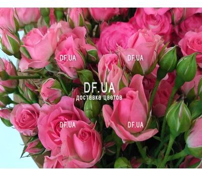 """Bouquet of small pink shrub roses - view 3"" in the online flower shop df.ua"