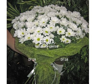 """""""Bouquet of camomiles to buy - view 1"""" in the online flower shop df.ua"""
