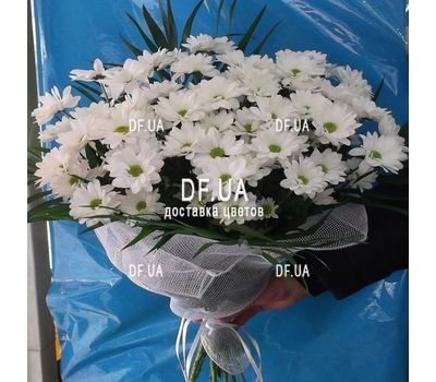 """""""Bouquet of camomiles to buy - view 3"""" in the online flower shop df.ua"""