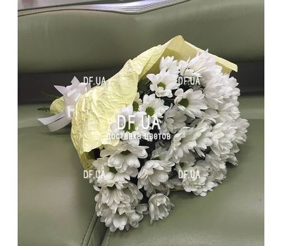 """Bouquet of chamomile - view 2"" in the online flower shop df.ua"