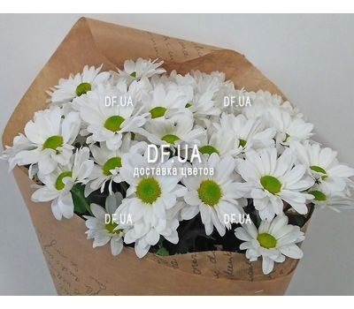 """Bouquet of chamomile - view 4"" in the online flower shop df.ua"