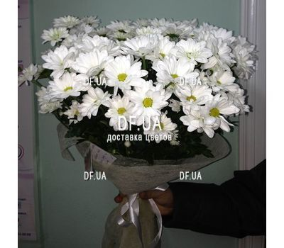 """A bouquet of chamomiles - view 4"" in the online flower shop df.ua"
