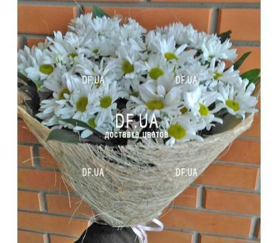 """""""Beautiful camomiles - view 1"""" in the online flower shop df.ua"""
