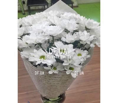 """""""Beautiful camomiles - view 2"""" in the online flower shop df.ua"""