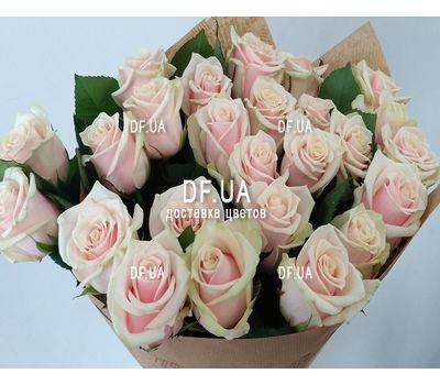 """Bouquet of 25 cream-colored roses - view 1"" in the online flower shop df.ua"
