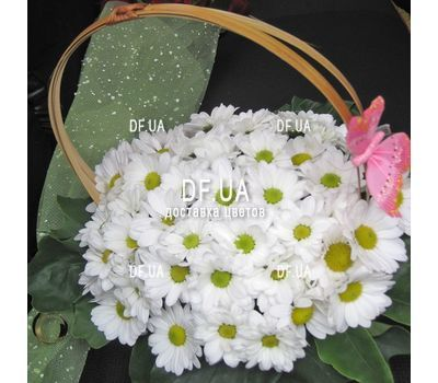 """""""Composition in a basket of chrysanthemums - view 2"""" in the online flower shop df.ua"""