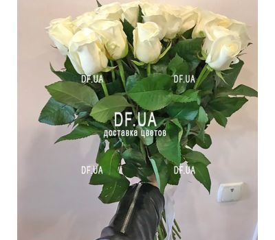 """31 white rose - view 1"" in the online flower shop df.ua"