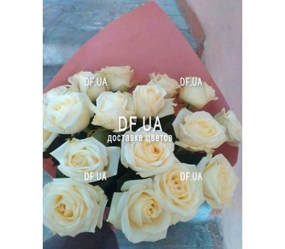 """Bouquet of 17 white roses - view 1"" in the online flower shop df.ua"
