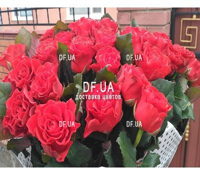 """Bouquet of 55 red roses - view 2"" in the online flower shop df.ua"