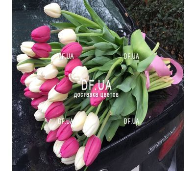 """Delicate bouquet of 51 white and pink tulips - view 1"" in the online flower shop df.ua"