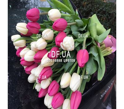 """Delicate bouquet of 51 white and pink tulips - view 2"" in the online flower shop df.ua"