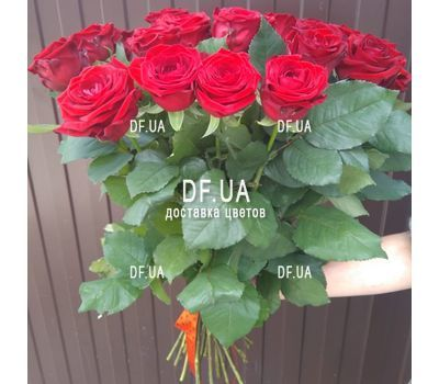 """Bouquet of 25 red roses with ribbon - view 1"" in the online flower shop df.ua"