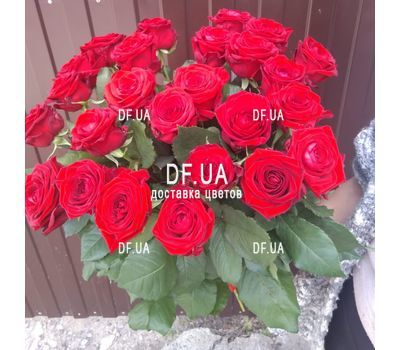 """Bouquet of 25 red roses with ribbon - view 2"" in the online flower shop df.ua"