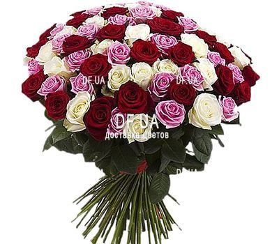 """65 multi-colored roses"" in the online flower shop df.ua"